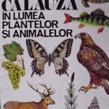 *CALAUZA IN LUMEA PLANTELOR SI ANIMALELOR - Carte de aventura