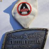 Medalie BAD VOSLAU, Europa