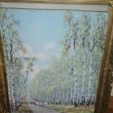 TABLOU-Car cu boi in padure de mesteceni, Peisaje, Realism