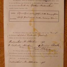 Document austriac, Bucovina, 1893, 4 - Hartie cu Antet