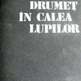 Drumet in calea lupilor - Nicolae Dragos, Mihail Stoian - Istorie