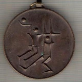 C358 Medalie Handbal -Cupa Internationala Balaton, 1973, Veszprem -Ungaria -marime cca 35X40mm, gr. aprox 27 gr. -starea care se vede