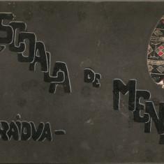 Scoala de menaj Craiova - Album lucrari de arta decorativa
