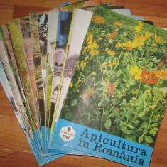 Revista APICULTURA IN ROMANIA, colectie completa pe anul 1980 (stuparit, albinelor, stuparului, albinarit) 8 lei/revista