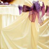 Decoratiuni nunta - HUSA PENTRU SCAUN EVENIMENTE -set 100 bucati