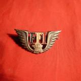 Insemn -Insigna FFI 1944-1945, numerotat