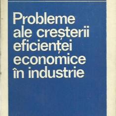 Costica Chitimia - PROBLEME ALE CRESTERII EFICIENTEI ECONOMICE IN INDUSTRIE