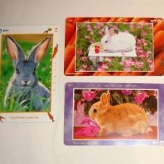 Set 3 cartele Japonia - FAUNA, ANIMALE, IEPURI - 2+1 gratis toate licitatiile - RBK2274 - Cartela telefonica straina
