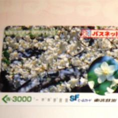 Cartela / Card Japonia - ARTA, FLORA, FLORI -   2+1 gratis toate licitatiile - RBK2389