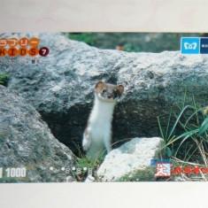 Cartela / Card Japonia - NATURA, ANIMALE - NEVASTUICA -   2+1 gratis toate licitatiile - RBK2393