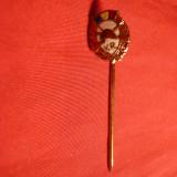 Insigna Miniatura - Veteran de Razboi