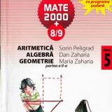 Manual Clasa a V-a, Matematica - MATE 2000 8/9 - ARITMETICA, ALGEBRA, GEOMETRIE PARTEA A II A CLASA A V A de SORIN PELIGRAD ED. PARALELA 45
