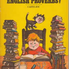 Do you know english proverbs? - Marilena Macarie - Carte Proverbe si maxime