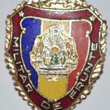 25 OKAZIE, MEDALIE ROMANIA MILITAR DE FRUNTE - Medalii Romania