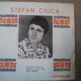 Stefan ciuca vinyl single populara radu voinescu cate pasari codur are muzica populara folclor electrecord