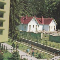 Carti Postale Romania dupa 1918 - Bnk cp Baile Moneasa - Vedere - necirculata