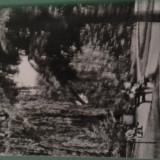 1964 BACAU VEDERE DIN PARC NECIRCULATA IMPECABILA - Carte Postala Moldova dupa 1918