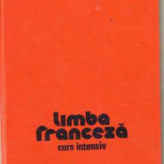 Limba franceza curs intensiv - Curs Limba Franceza Altele