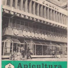 Revista/Ziar - 5A(000) revista-APICULTURA IN ROMANIA mai 1989