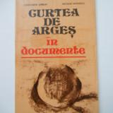 CURTEA DE ARGES IN DOCUMENTE, BUCURESTI, 1980 - Istorie