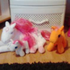 Animal de plus - Familie de ponei plus ...marime mare si medie