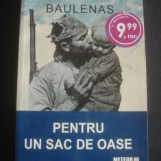Roman - LLUIS ANTON BAULENAS - PENTRU UN SAC DE OASE