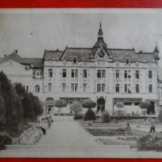 Carti Postale Romania dupa 1918 - CP anii 50 - Satu-Mare - In parc