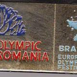 Insigna sport Olimpiada Romania Brasov 2013, Festival de iarna Olimpic
