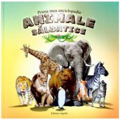 Carte de colorat - Prima Mea Enciclopedie - Animale Salbatice