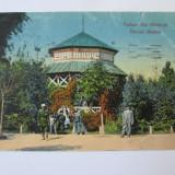 RARA! C.P. OLTENITA PARCUL MUZICI ANII 1906-1908 - Carte Postala Muntenia 1904-1918, Circulata, Printata