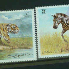 UMM AL QIWAIN – ANIMALE SALBATICE AFRICANE, timbre nestampilate P78 - Timbre straine