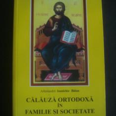 IOANICHIE BALAN - CALAUZA ORTODOXA IN FAMILIE SI SOCIETATE II - Carti ortodoxe, Nemira