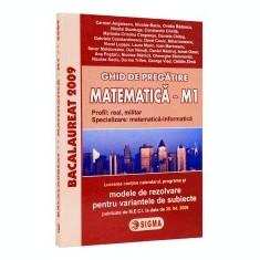 Bacalaureat. Ghid de pregatire la matematica M1. Modele de rezolvare pentru variantele de subiecte - Culegere Matematica