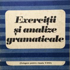EXERCITII SI ANALIZE GRAMATICALE - Silviu Constantinescu - Culegere Romana