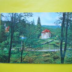HOPCT 11915 BAILE MONEASA -VEDERE - JUDETUL ARAD [ CIRCULATA ] - Carti Postale Romania dupa 1918, Printata