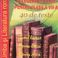 LIMBA SI LITERATURA ROMANA. CULEGERE DE TESTE PENTRU CLASA A VII-A - Ada Stuparu, Anca Sirghie - Culegere Matematica