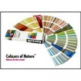 Pigment pentru colorare tencuiala - GALBEN 04