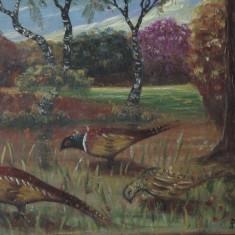 tablou cu rama din lemn - pictura peisaj  de vanatoare / fazan - semnat !!!!