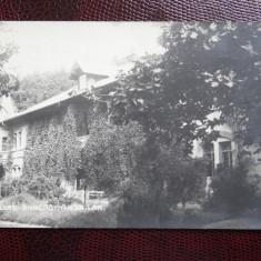 Carte postala veche - Bicsad - Bikszad - Comuna Bixad, Satu Mare, Circulata, Printata