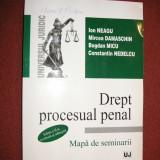 Drept procesual penal. Mapa de seminarii - Ion Neagu, Mircea Damaschin -editia 2 - Carte Drept penal
