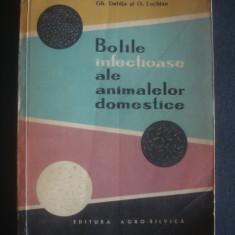 GH. DABIJA, O. LUCHIAN - BOLILE INFECTIOASE ALE ANIMALELOR DOMESTICE - Carte Medicina veterinara