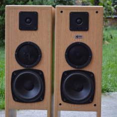 Boxe Orbid Sound
