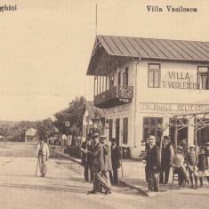 TECHIRGHIOL VILLA VASILESCU, MAGAZIN COLONIALE DELICATESE - Carte Postala Dobrogea dupa 1918, Necirculata, Printata