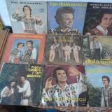 Muzica Populara electrecord, VINIL - VAND Colectie placi pick-up Ion Dolanescu