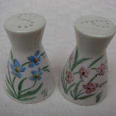 Sararite din portelan german ROSENTHAL ptr. sare si piper, pictate manual, Decorative