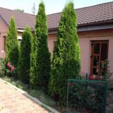 Casa de vanzare in cartierul Nord, 130 mp, Numar camere: 6, Suprafata teren: 500