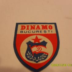 Ecuson Dinamo