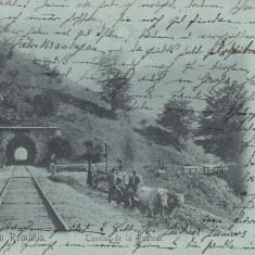 SALUTARI DIN ROMANIA, TUNELUL DE LA BUSTENI, STAMPILA AUG.1900 - Carte Postala Muntenia pana la 1904, Circulata, Printata
