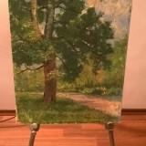 Tablou, Arbori, Ulei, Altul