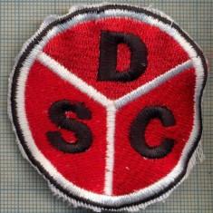 150 -EMBLEMA - DSC - GERMANIA? -starea care se vede - Uniforma militara